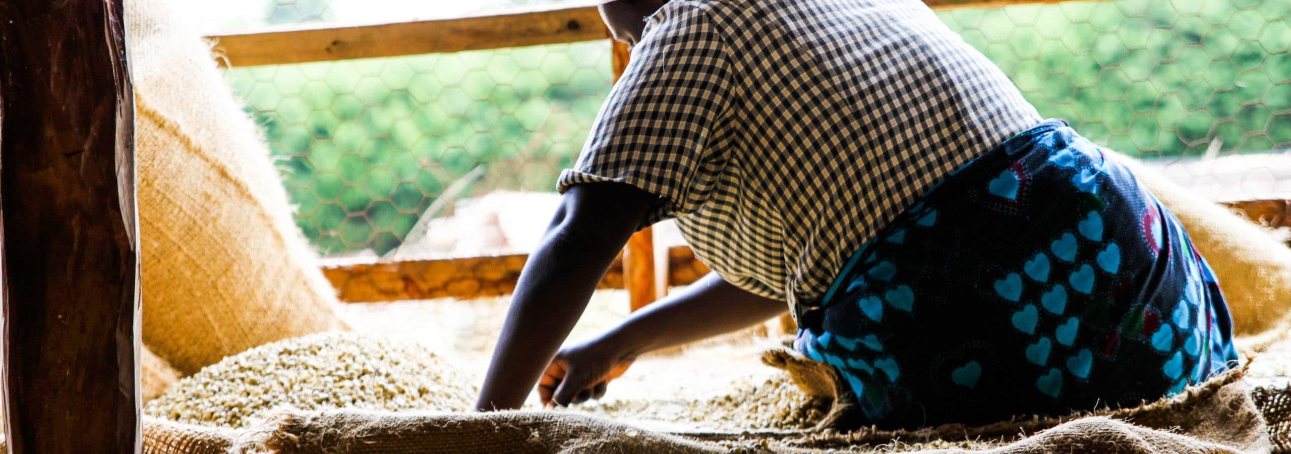 Kenyan Coffee Mill