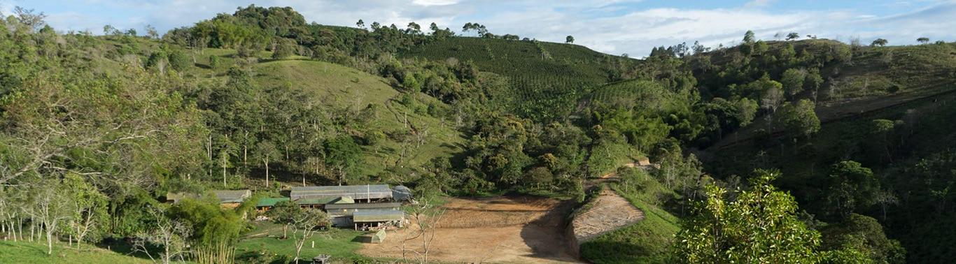 View from Finca Tamana Coffee Farm